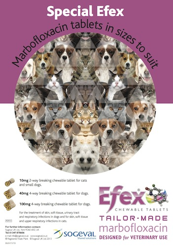Efex 500